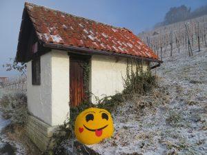Vorweihnachtliche Lach-Wanderung Metzingen Neuhausen @ Innere (Fest-) Kelter, Kelterstraße 40, 72555 Metzingen – Neuhausen